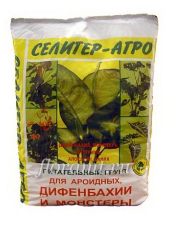 порезан грунт для ароидных растений это какой грунт тень отходит