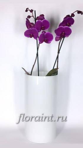Ваза Цилиндр опал, 40 см (90-200)